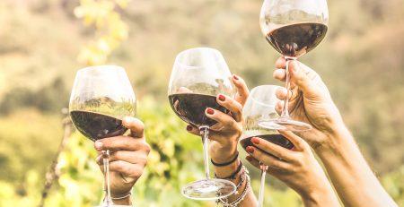 vino vegano per cena con amici